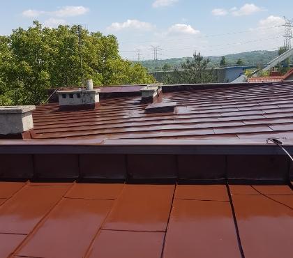 Pomalowane dachy